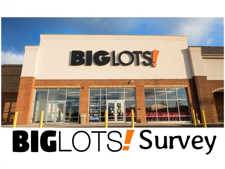 big lots survey