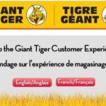 www.TalktoGiant.com – Giant Food Stores Receipt Survey