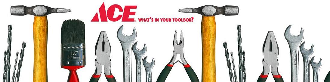 ACE Hardware Survey Via Mail