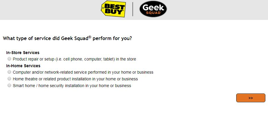 Geek Squad Site Survey